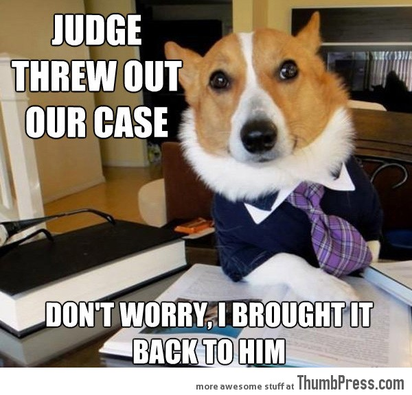 Lawyer Dog 21 Different Animal Memes: When Animals Unlock Level Awesome