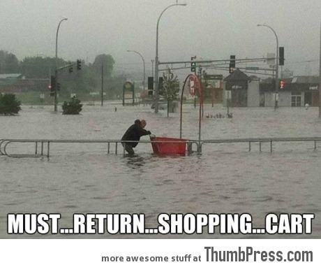 Must... Return... Shopping... Cart