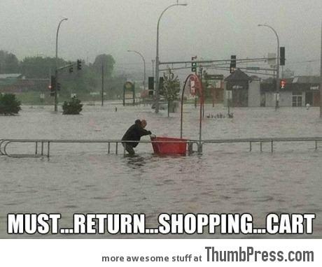 Must... Return... Shopping... Cart