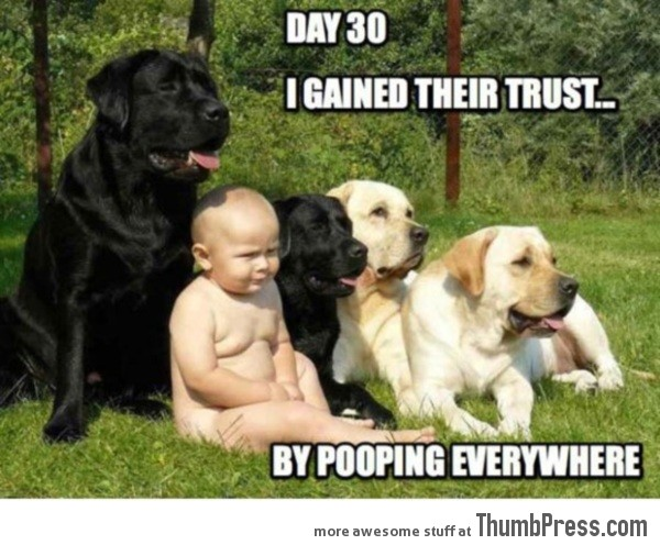 I gained their trust…