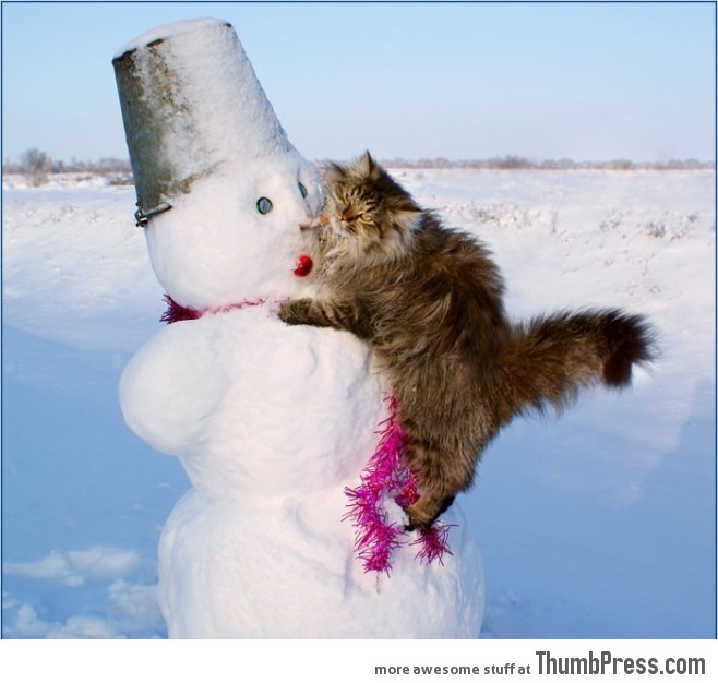 I love You so much Mister Snowman!