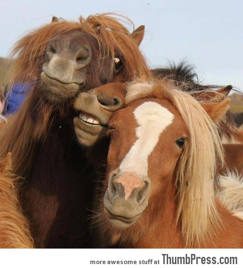 When drunken girls try to pose for a picture…
