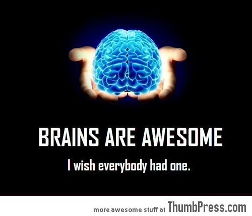 BRAINS ARE AWESOME. BRAINS ARE AWESOME.
