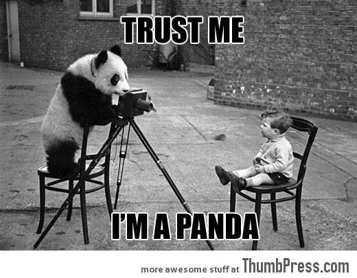 TRUST ME, I'M A PANDA.