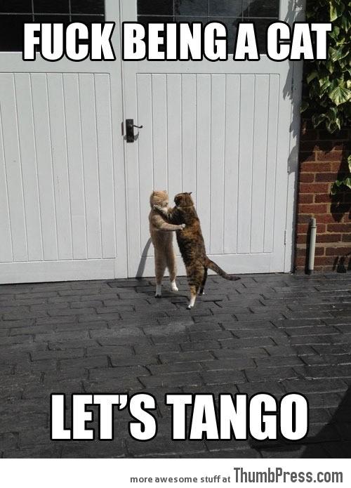 It's tango time…