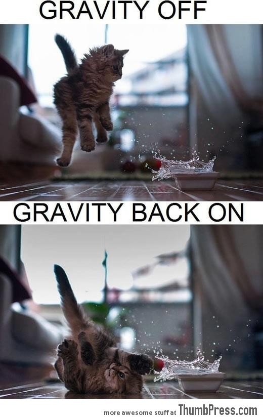 Gravity facts