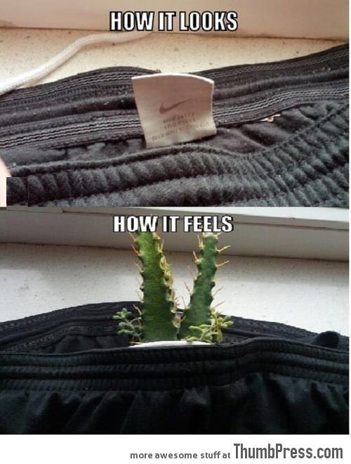How It Looks… How It Feels