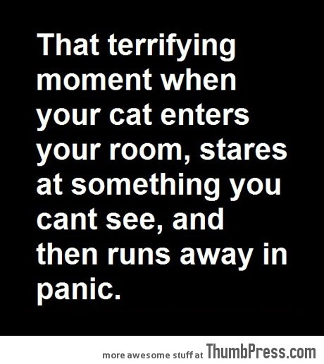 THAT TERRIFYING MOMENT...