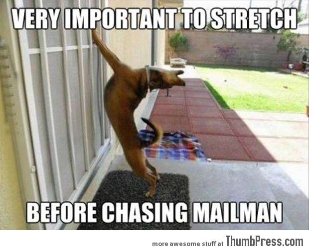Before chasing mailman