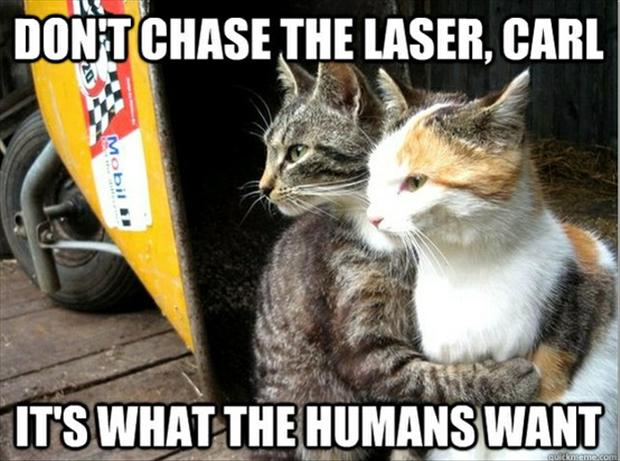 Don't chase that laser