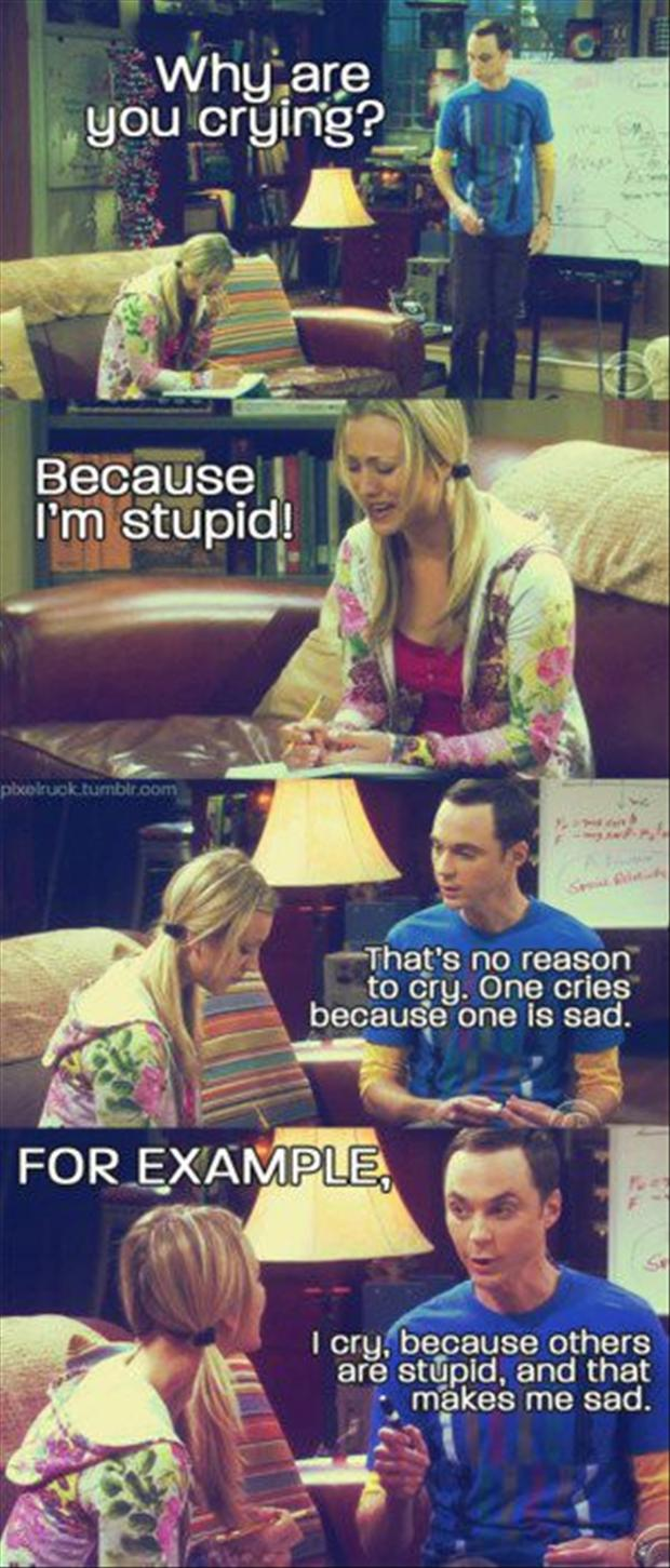 Funny Big Bang Theory Pictures - Penny and Sheldon talking