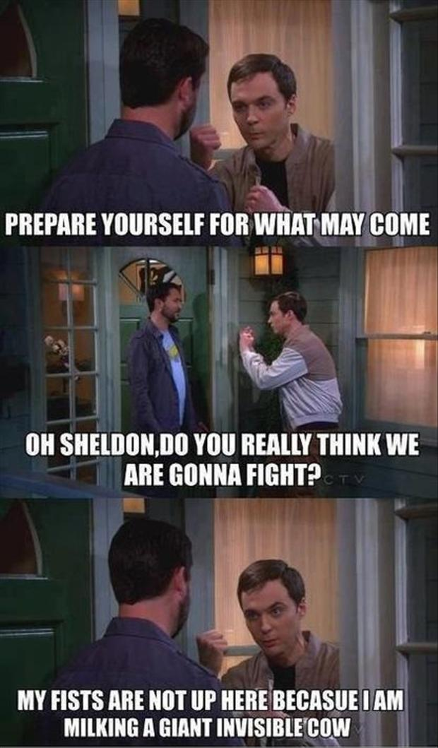 Funny Big Bang Theory Pictures - Sheldon Cooper fighting