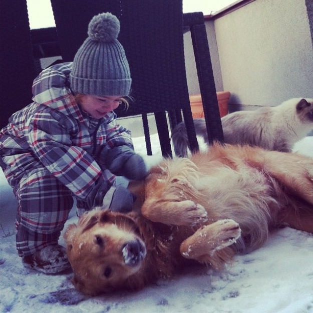 Fur ball will play with you in the snow, even when it's cold outside