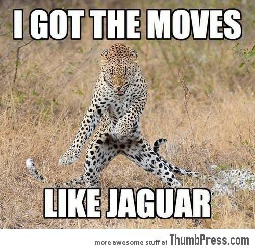 I GOT THE MOVES LIKE JAGUAR.