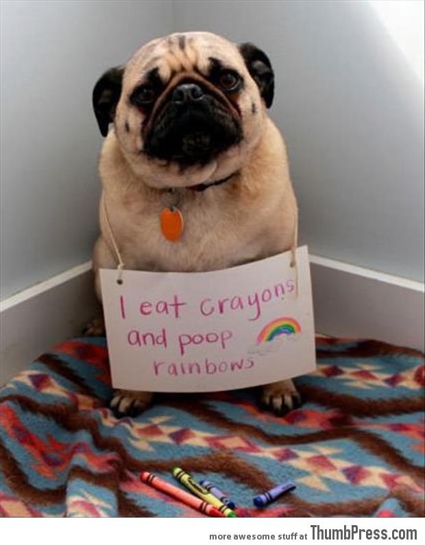 I eat Crayons