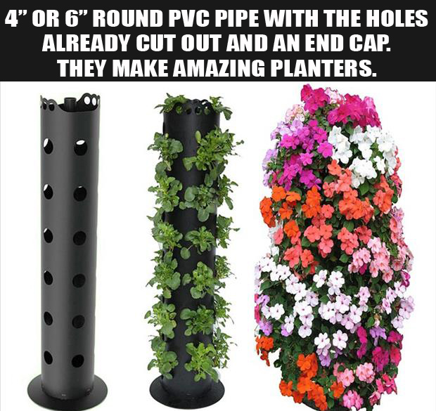 Make amazing planters with drilled PVC pipes