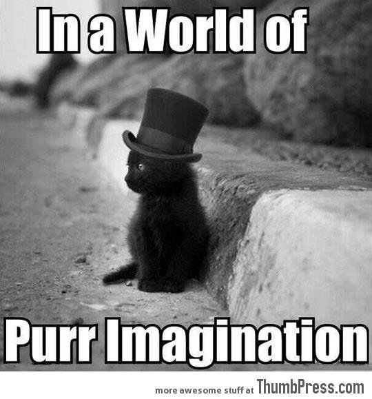 Purr Imagination