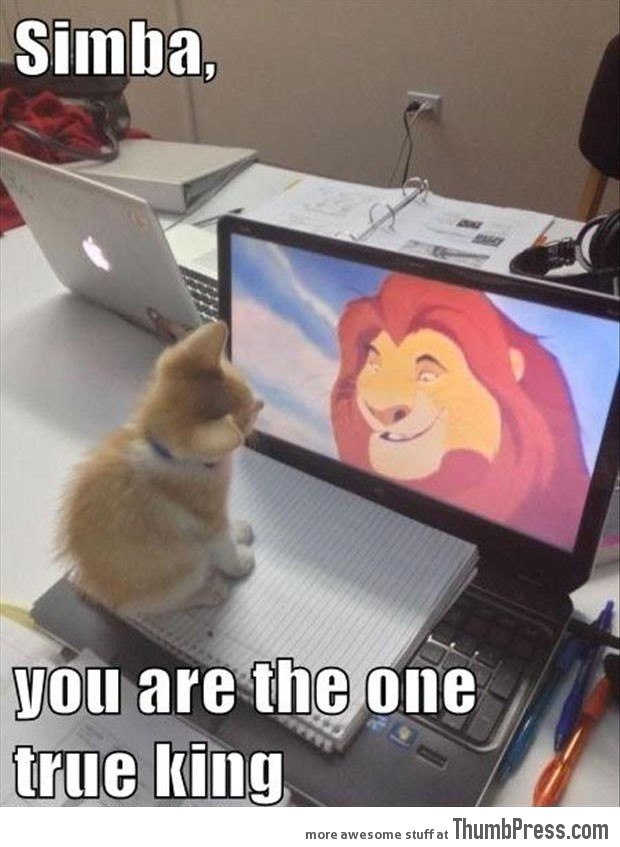 Simba-you're-the-one-true-king