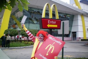 1. Andy Dick protesting at a Chicago McDonalds.