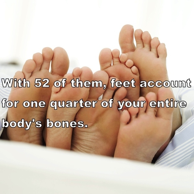 Amazing Facts About Human Body 19