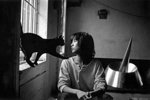 Architect Maya lin with her cat