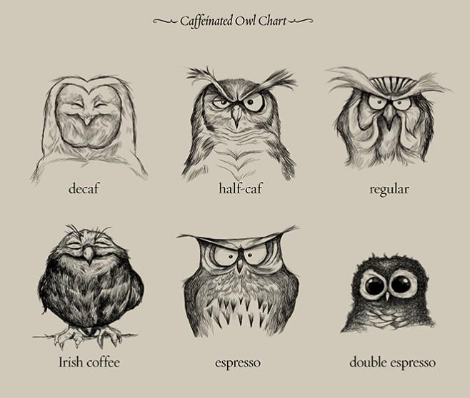 Caffeinated Owl Chart