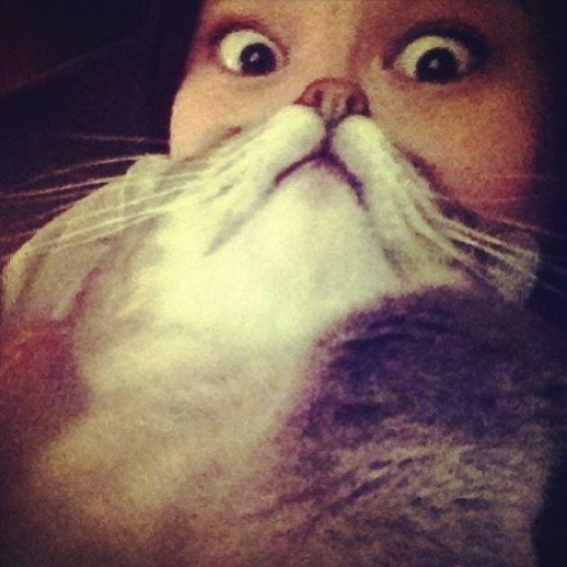 Cat Beards 2