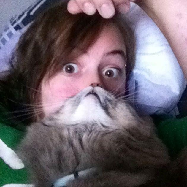 Cat Beards 3
