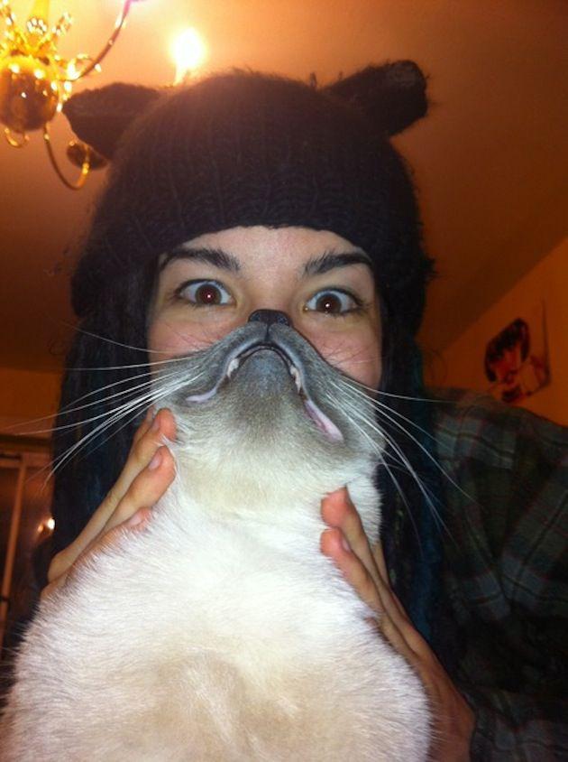 Cat Beards 4
