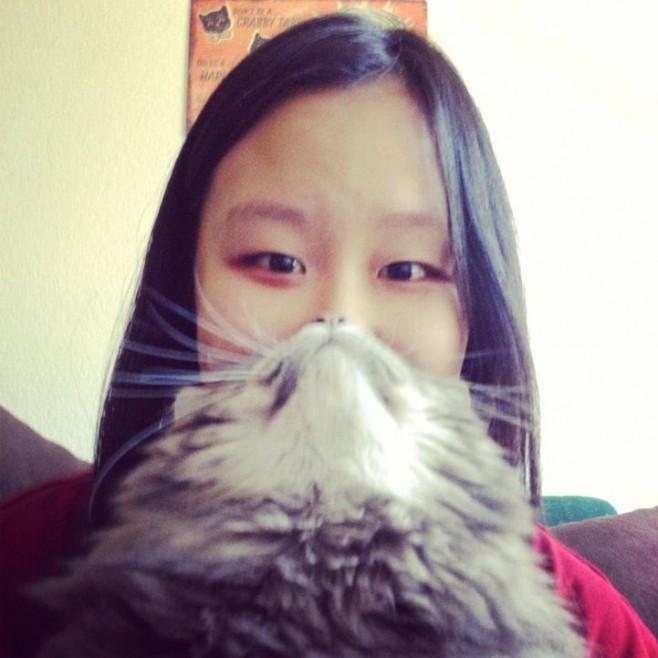 Cat Beards 6