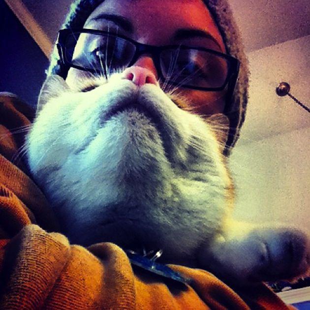 Cat Beards 9