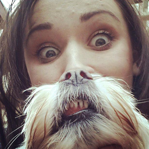 Dog Bearding 13