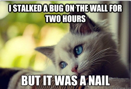 First-World Cat Problems 18