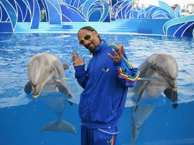 Just Snoop Dogg with some dolphins.
