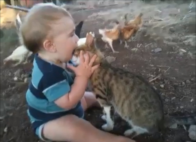 Kids trying to eat their pets 11