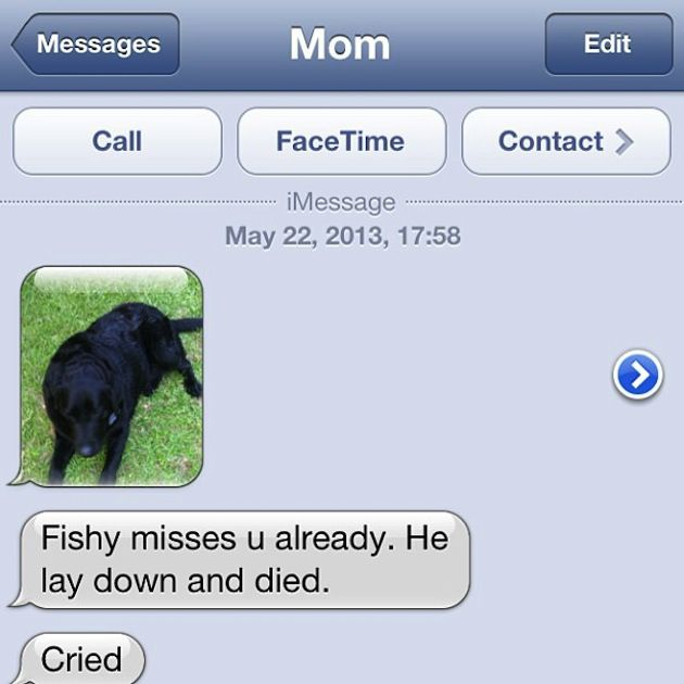 Most Hilarious Autocorrects Ever 4