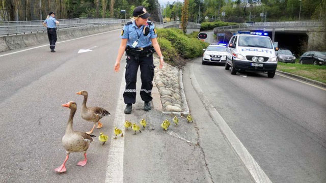 Police helping a family
