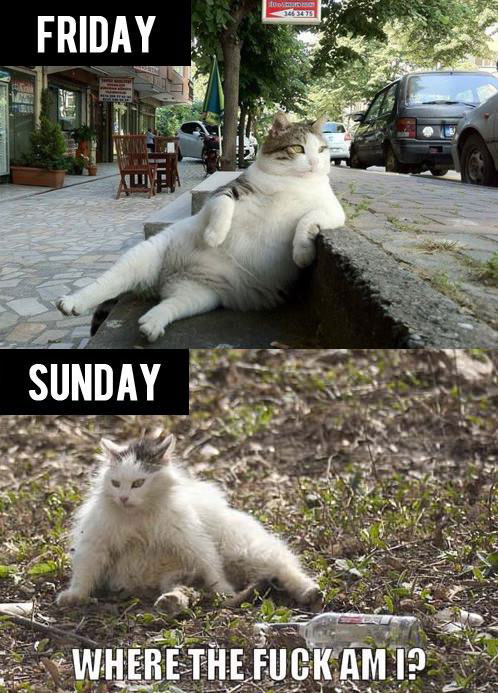 The Difference Between Friday and Sunday