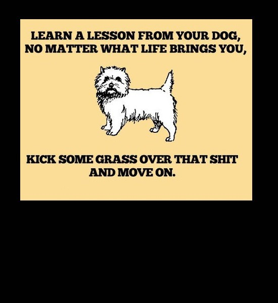You can learn a lot from your dog.