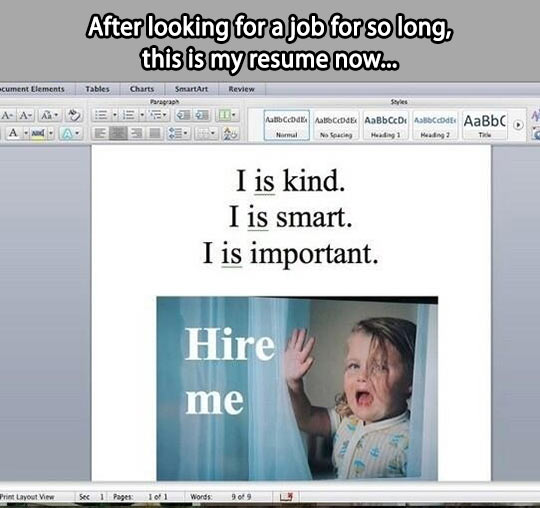 After looking for a job for so long, this is my resume now...