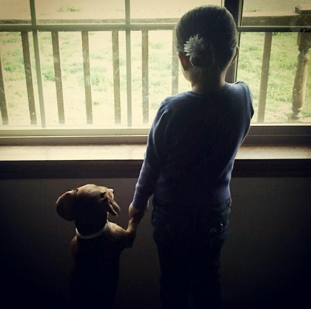 Kids and Animals 16