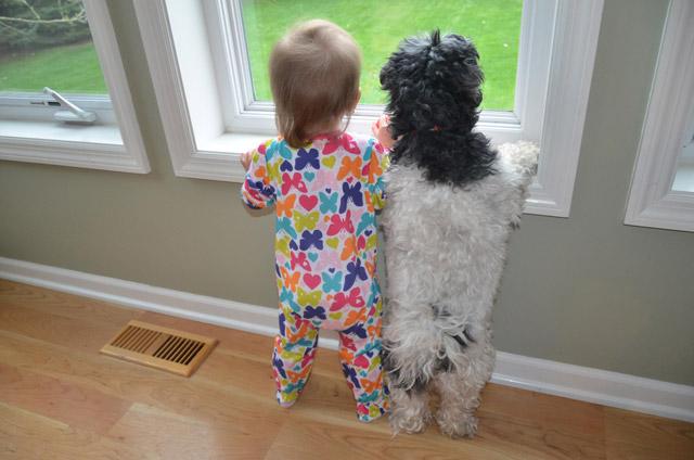 Kids and Animals 7