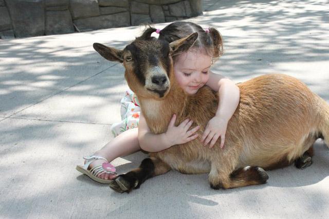 Kids and Animals 8
