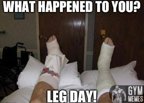 Train Legs, It Would Be Fun They Said