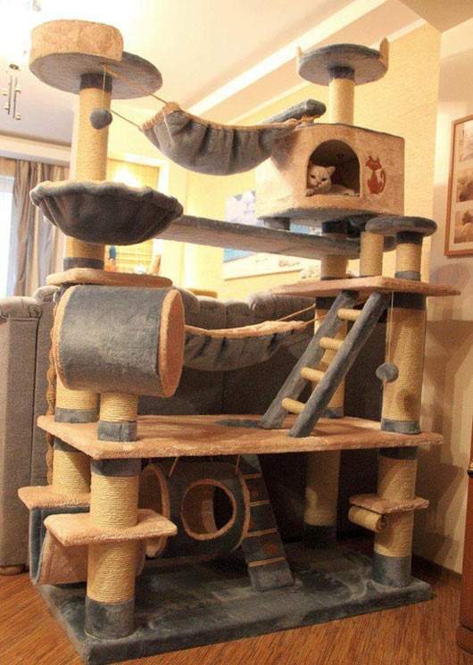 epic cat tree ForEpic Cat Tree