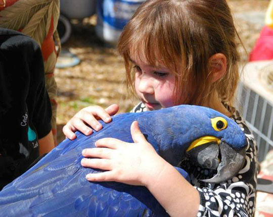 A young girl hugging a bird…