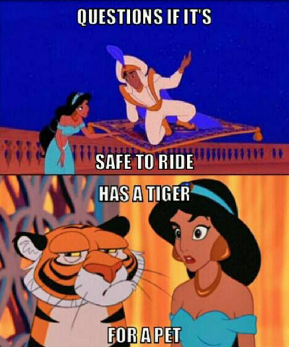 Disney princess logic…