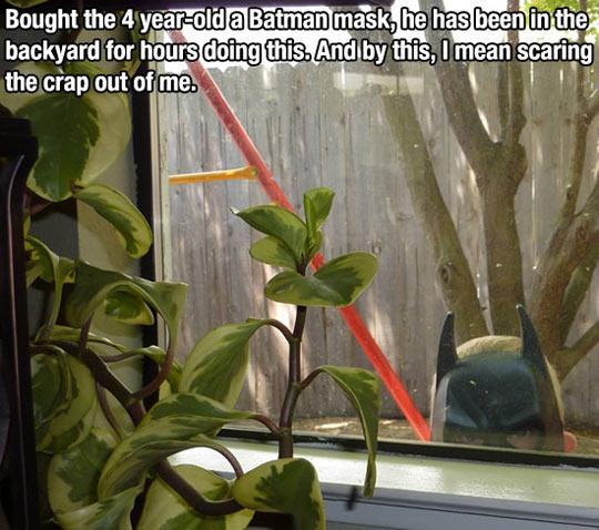 funny-Batman-mask-child-window-yard