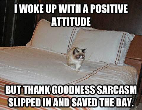 funny-Grumpy-Cat-positive-attitude-sarcasm-save-day