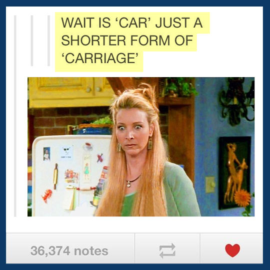 funny-Tumblr-Phoebe-Friends-car